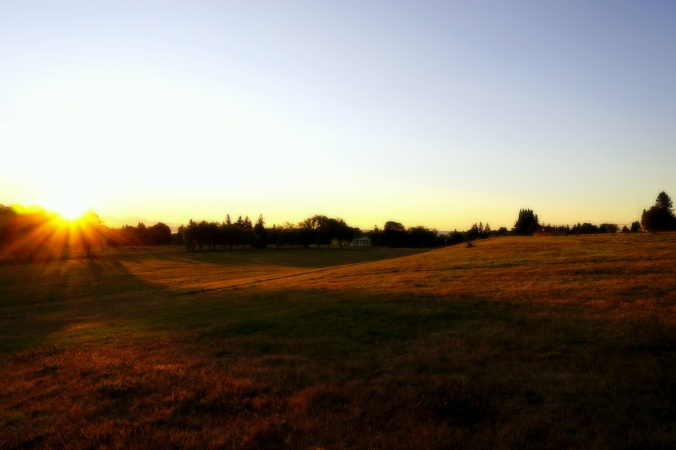Sunset, Discovery Park, July 27th, 2014
