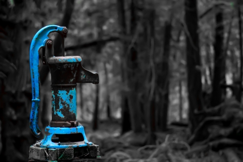 Pump in the Woods